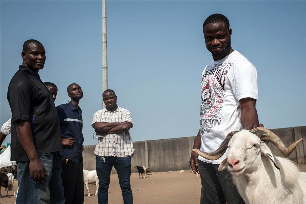 10. Dayo Folami, right, his undefeated ram King of Oils, and his friends stand near the ram fighting arena at the National Stadium in Lagos on March 20. STEFAN HEUNIS / AFP - Getty Images